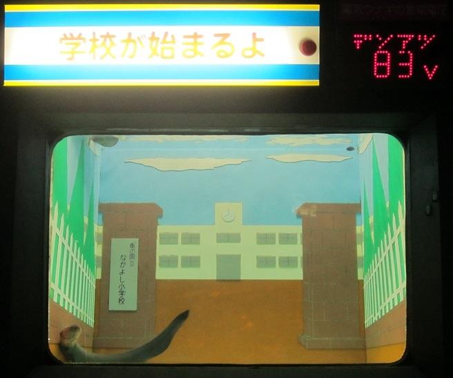 京急油壺マリンパークの電気ウナギ