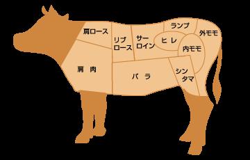 beef_parts
