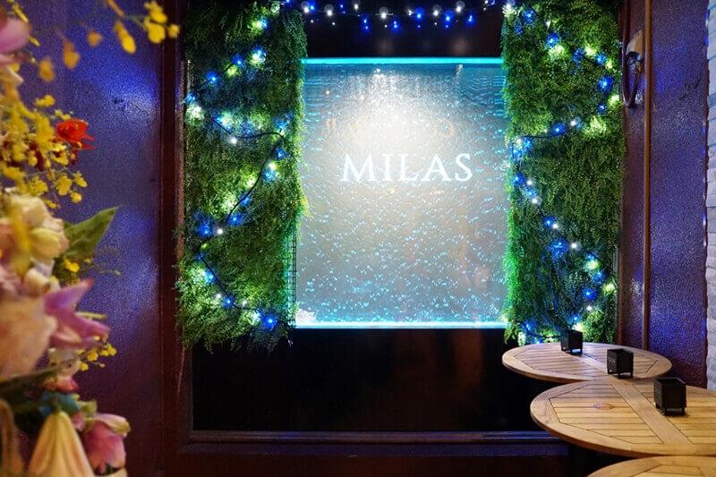 入り口横「MILAS」の壁。